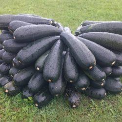 Fina grönsaker fanns att köpa
