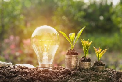Energibesparande glödlampa och träd växer på staplar av mynt på naturbakgrund.